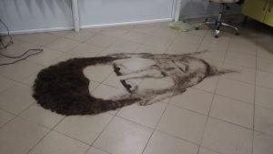 Новак Џокович-портрет од коса